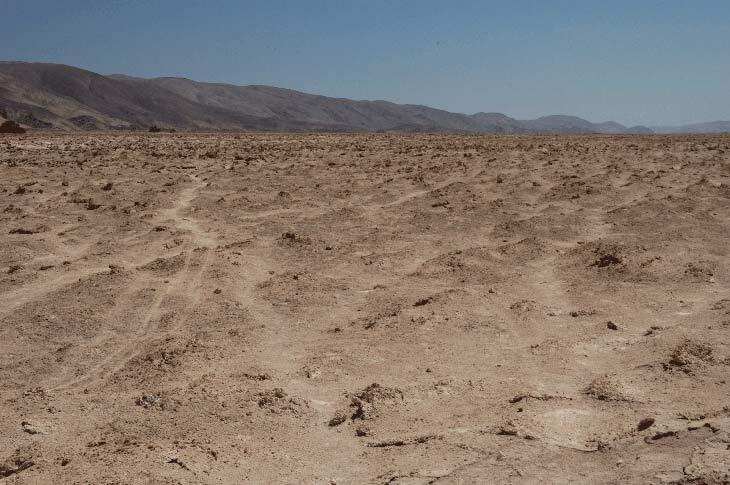 Chile biogeografico zonas ejemplo for Marmoles y granitos zona norte